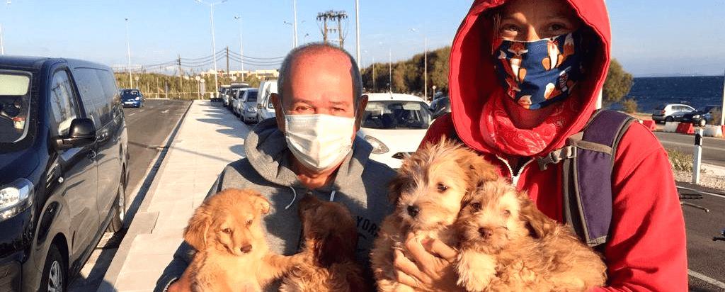 pups uit Moria